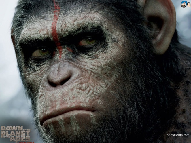 dawn-of-the-planet-of-the-apes-1a