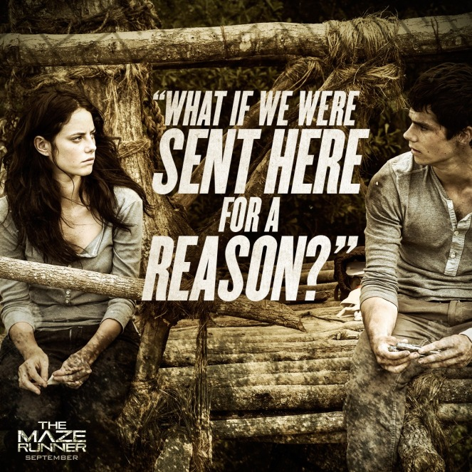 Movie-Quote-the-maze-runner-36957468-1200-1200